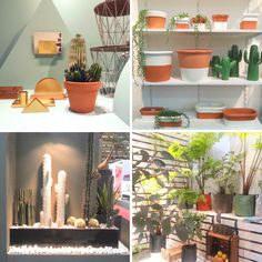 JOELIX.com | Green plants at Maison et Objet Paris 2014 greens house plants urban jungle