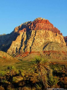 Red Rock Canyon National Conservation Area, Las Vegas, Nevada – USA