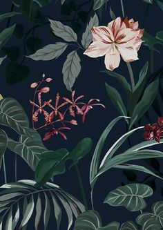 Saatchi & Saatchi, Print Design, Plant Leaves, Wallpaper, Prints, Illustrations, Patterns, Block Prints, Print Layout