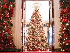 Google Image Result for http://www.dcpages.com/gallery/d/14485-2/TreeThrewDoors.jpg