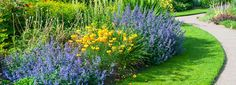 GardenUP Sunshine Border garden design