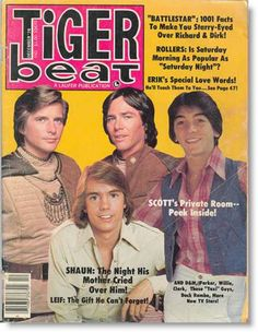 December 1978 Tiger Beat Cover~                                              it was a BIG thing if you got to read one of these!!