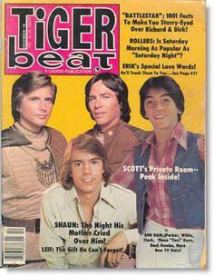 December 1978 Tiger Beat Cover