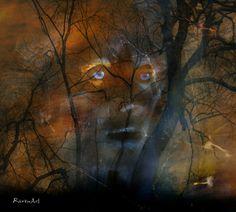 Kauf 'Roots' von Raven Art auf Leinwand, Alu-Dibond, (gerahmten) Postern und Xpozer.