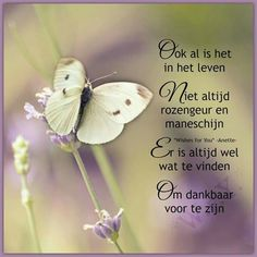Ik True Quotes, Motivational Quotes, Funny Quotes, Inspirational Quotes, Dutch Phrases, Have A Happy Day, Dutch Quotes, Cool Writing, Just Be You