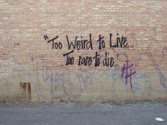 Too Weird To Live Too Rare To Die. Aesthetics of Crisis. 2014, Chicago, Wicker park, usa.
