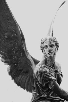 Discovered by nour. Find images and videos about angel, art and statue on We Heart It - the app to get lost in what you love. Cemetery Angels, Cemetery Art, Cemetery Statues, Angels Among Us, Angels And Demons, Statue Ange, Sculptures, Lion Sculpture, Angeles