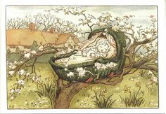 Baby Sleeps in Tree Top -Kate Greenaway.  This illustrator was one of Cicely Mary Barker's inspirations.