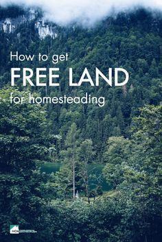 You never thought cheap land or free land in the US are options? Get to know about 17 most lucrative lands you can get for homesteading completely for free.