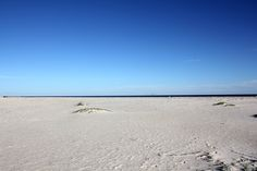 #Beach at Sike's Cut in the St. George Island Plantation