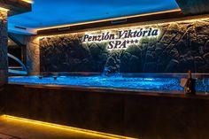 Stainless steel pool with overflow trough Swimming Pools, Aquarium, Spa, Stainless Steel, Life, Aquarius, Pools, Swiming Pool, Fish Tank