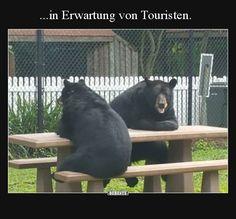 ...in Erwartung von Touristen.