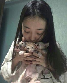 sulli : my idea Sulli Choi, Choi Jin, Korean Girl, Asian Girl, My Bebe, I Miss U, Victoria, Sully, Loving U