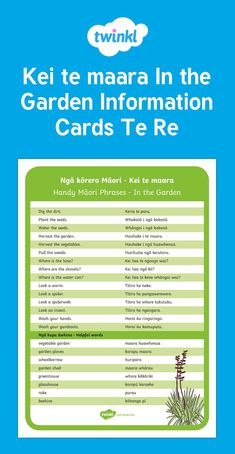 Handy vocab for in the garden. Science Resources, School Resources, Teaching Resources, Waitangi Day, Maori Words, Maori Designs, Shape Puzzles, Maori Art, Play Based Learning