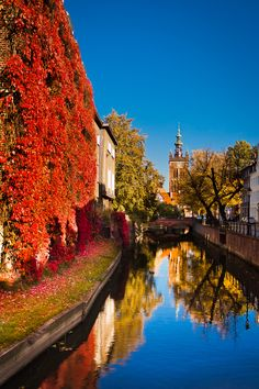 """my lunch break"" by Adam Sandurski on 500px - This is a lovely photograph of an autumn day in Gdansk, Poland."