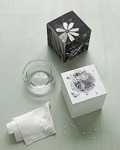 Black-and-white images of nature form photo cubes, which can also be used as bookends. The photographs aren't glued to the cube. Instead, a special gel is used to transfer the images onto blocks. Transfers last longer than paper photographs, so this decoration can remain a fixture for years.Plain wooden cubes are available at crafts stores, as is the soft-gel transfer medium needed for this project. Bear in mind that the blocks require a fair amount of drying time as each transferred...