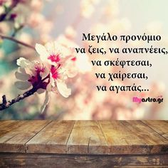 Poetry Quotes, Book Quotes, Life Quotes, Beauty Video Ideas, Beauty Salon Interior, Black Photography, Picture Quotes, Quote Pictures, Greek Quotes