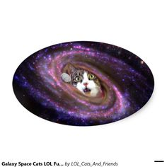 Galaxy Space Cats LOL Funny Oval Sticker