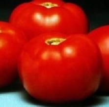 Pase Seeds - Better Bush Tomato Seed - 25 Seeds Pase Seeds New, $3.99 (http://www.paseseeds.com/better-bush-tomato-seed-25-seeds-pase-seeds-new/)