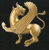 persian lionness