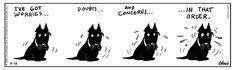 Raising Duncan Comic Strip, July 31, 2014 on GoComics.com