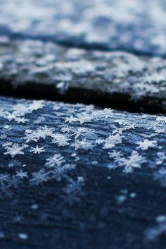 """"""" Snowflakes on the Roof by ILIAS N. - - ponderation: """" Snowflakes on the Roof by ILIAS N… – -ponderation: """" Snowflakes on the Roof by ILIAS N. - - ponderation: """" Snowflakes on the Roof by ILIAS N… – - I Love Winter, Winter Snow, Winter Blue, Winter Photography, Nature Photography, Snowflake Photography, Photography Ideas, Photography Flowers, Foto Macro"""
