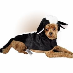 Otis and Claude Fetching Fashion Skunk Costume uses velcro closures to ensure that it stays securely on your #dog. This costume comes in an Extra Large size- but it is also available in Extra Small, Small, Medium, and Large sizes.
