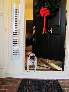 "ihavelotsofdogs: ""Looking for Santa Claus by geraldbrazell on Flickr. """