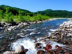 大倉川風景