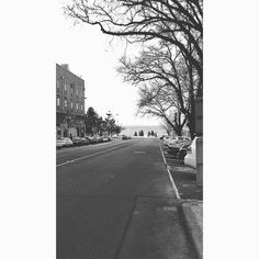 Quiet Waterfront  #waterfront #geelong #geelongwaterfront #victoria #australia #throwback #latepost #2015 #emptyroad #calm #quiet #drytree #trees #nature #sky #blacknwhite #serene #picoftheday #vsco #travel #landscape #wanderlust by sunvad http://ift.tt/1JtS0vo