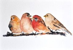 how to paint small birds - Google Search