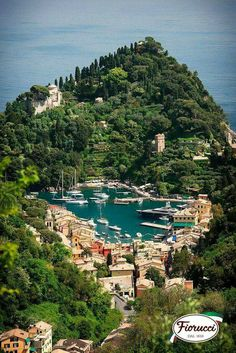 Portofino harbour in Italy❤