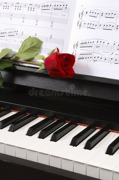 Piano with Sheet Music and a Rose. Sheet music with rose on piano , Piano Art, Piano Sheet Music, Flower Phone Wallpaper, Wallpaper Backgrounds, Piano Photography, Disney Kiss, Happy Weekend Quotes, Whatsapp Background, Beautiful Rose Flowers
