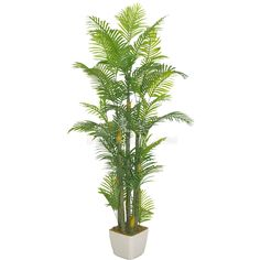 GNW home decoration artificial plant Small Palm Trees, Artificial Plants, Cactus Plants, Hawaii, Leaves, Exterior, Decoration, Decor, Fake Plants