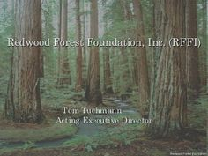 What is a Community Forest? - Sonoma Land Trust