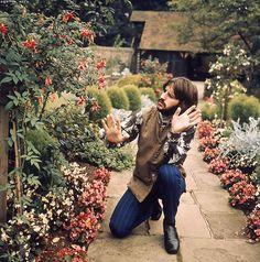 oh Ringo.