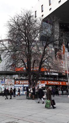 #siyahbeyazfoto #ağaç #siyahbeyazağaç #şehirkalabaklığı #gürültü #trafik #ankara #kızılay #kızılayavm #burgerking Hacker Wallpaper, Ankara, Perfect Photo, Story Time, Aesthetic Wallpapers, Instagram Story, Istanbul, Street View, Photography