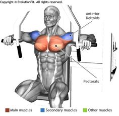 CHEST - HORIZONTAL CHEST PRESS