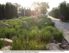Name of Project: Qinhuangdao Botanic Garden: Landscape as settingsLocation: Qinuangdao City, Hebei, ChinaProject Type: ParkSize: 26.5 HectaresLandscape Architect: Turenscape (Beijing Turen Design Institute)