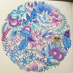 Johanna Basford | Picture by Debbi wiltshire | Colouring Gallery
