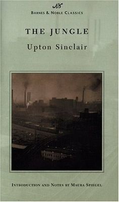 The Jungle by Upton Sinclair - This is the book that made me want to read more about immigration throughout US history.  Little Bee and Shanghai girls are other great books with immigration themes.
