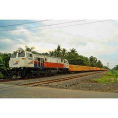 KA Pupuk  #kereta #keretaapi #kai #keretaapiindonesia #kai121 #keretaapikita #instakaiagustus2 #dipolokomotifmojosari #indonesianrailways #indonesianrailwayphotography #railways #railwayphotograph #trainspotting #train_nerds #trains_worldwide #locomotive #generalelectric #cc206series #semarang by adiadidot