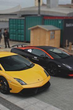two-tone Lamborghinis