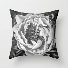 Peony Flower Square Throw Pillow by Edward M. Fielding - $20.00