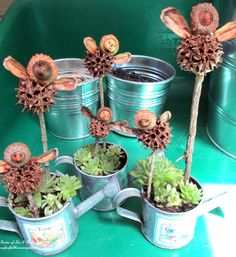 Lordy these faries are cute and made with things from the yard my grand kids will love making these ...
