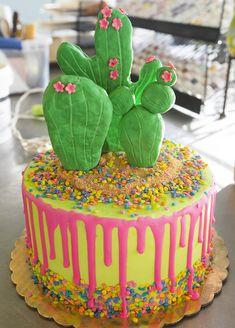 Cactus Cake 219 Deweys Bakery Kids Birthday Cakes
