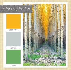 Get inspired with this marigold, jade and silver color palette.