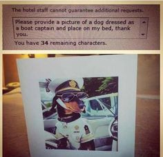 Bored businessman makes hilarious requests to hotel, with ridiculous results - Yahoo7