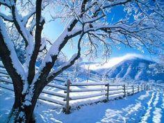 Nature desktop wallpaper winter wallpaper express is all about Winter Szenen, Winter Magic, Winter Time, Winter Season, Vermont Winter, Winter Months, Wallpaper Winter, Nature Wallpaper, Tree Wallpaper