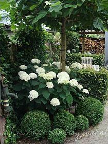 Rosamaria G Frangini | Architecture | Garden |